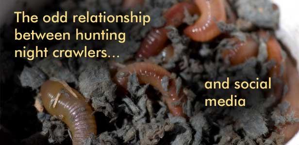 night crawler hunting and social media